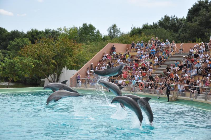 Planète Sauvage parc aquatique