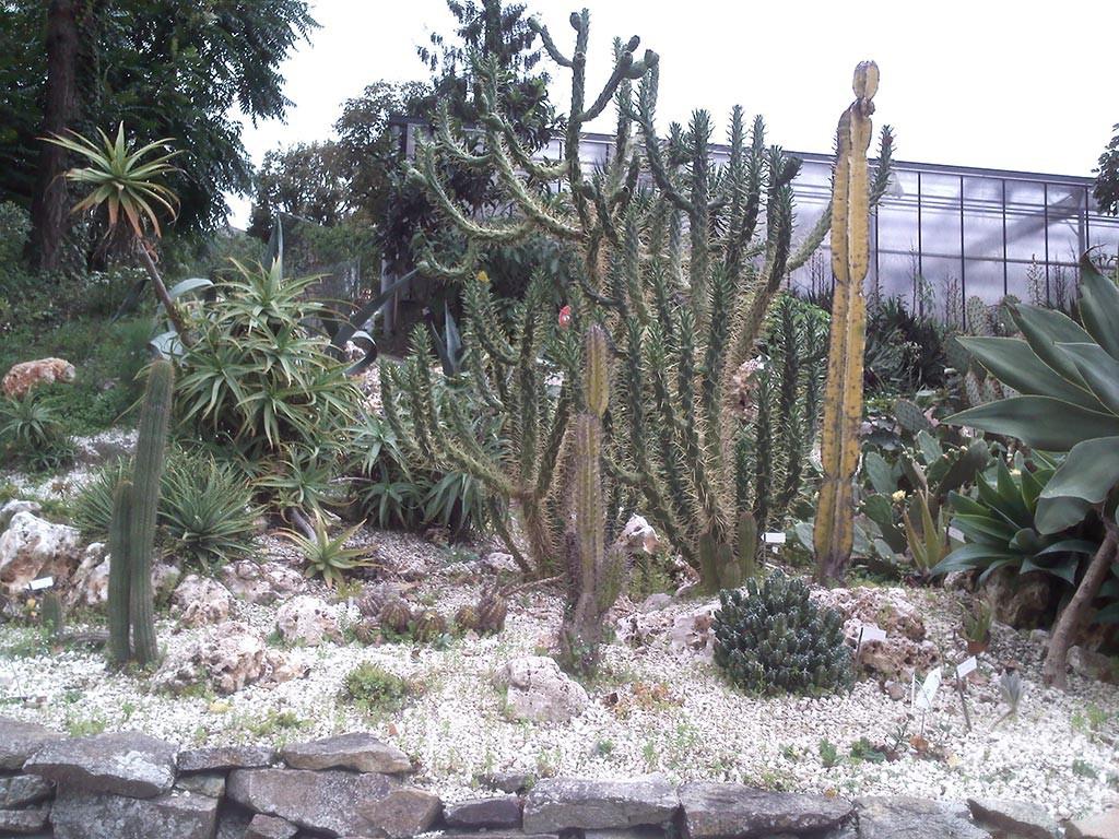 jardin des Olfacties Coex exotique