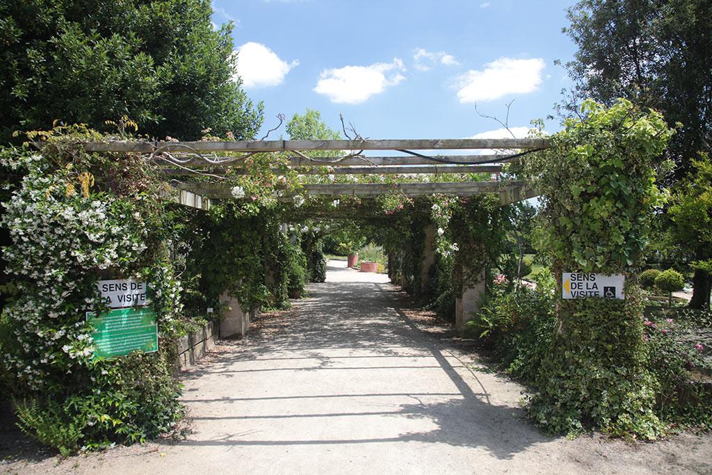 camping près jardin des Olfacties
