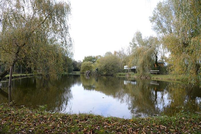 étang de pêche du camping calme en Vendée