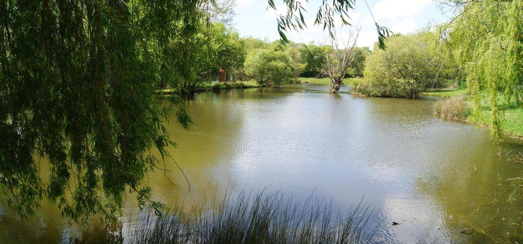 Camping avec emplacement et étang de pêche proche de Challans
